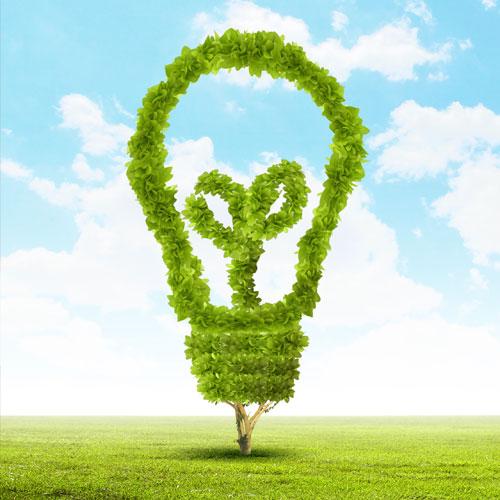 Servizi SINTEX per l'Ambiente